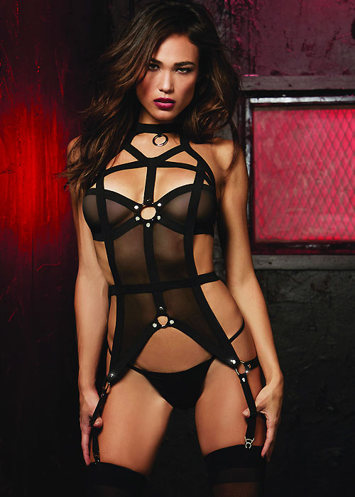 Dreamgirl Mesh And Elastic Bustier High Neck Detail With Attached Garter And Matching G-String
