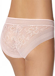 Janira Magic Band Seasonal Brief Zoom 2